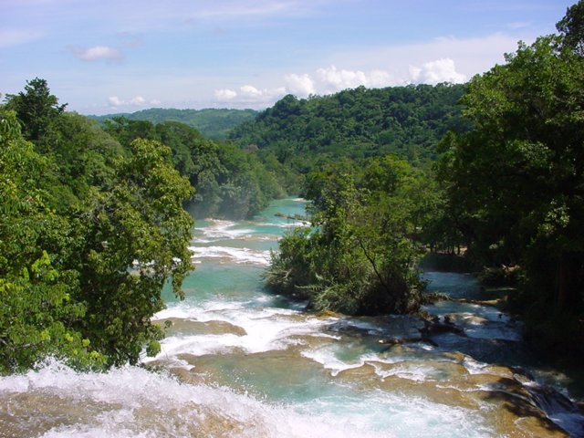 Agua azul waterval, chiapas, mexico